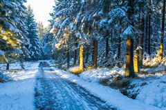 La primera nieve en el invierno imagen de archivo
