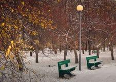 La primera nieve en el parque Fotos de archivo
