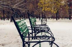 La primera nieve en el parque Foco selectivo Foto de archivo libre de regalías