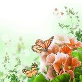 La primevère de ressort est dans un bouquet, fond floral Photos libres de droits