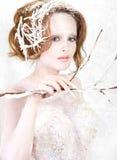 La princesa del hielo Foto de archivo libre de regalías