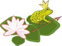 La princesse de grenouille Photographie stock