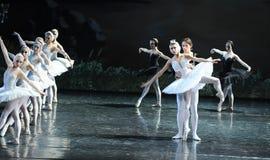 La princesse nouveau-née Ojta et le prince obtiennent à together-The la dernière scène du lac swan de Lac-ballet de cygne Image stock