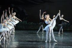 La princesse nouveau-née Ojta et le prince obtiennent à together-The la dernière scène du lac swan de Lac-ballet de cygne Photo libre de droits