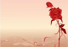 La priorità bassa del biglietto di S. Valentino con è aumentato Fotografie Stock