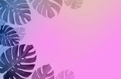 La progettazione minima del fondo di arte di concetto lascia a mostro tropicale blu rosa e lascia nel colore al neon olografico d immagine stock