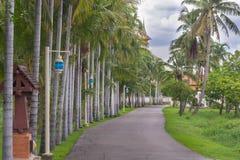 La promenade image libre de droits