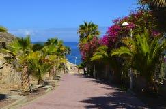 La promenade côtière avec des plantes tropicales s'approchent de la plage d'EL Duque en Costa Adeje, Ténérife, Îles Canaries, Esp Image stock