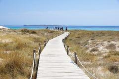 La promenade et la turquoise en bois arrosent à la plage d'Illetes à Formentera Îles Baléares l'espagne photos stock