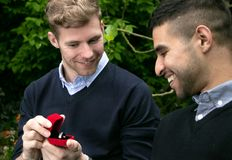 La proposta di impegno fra due omosessuali come un uomo propone con un anello di fidanzamento in scatola rossa immagini stock libere da diritti