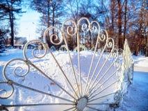 La protección forjada hierro protege árboles únicos en el invierno Foto de archivo libre de regalías