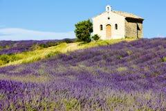 La Provence Image libre de droits