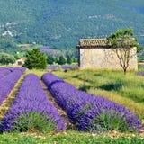 La Provenza, Francia fotografia stock