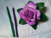 La púrpura se levantó Foto de archivo libre de regalías