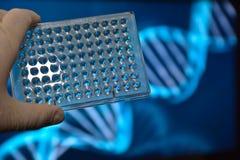La prueba de la DNA Foto de archivo libre de regalías