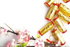 la prune chinoise de décorations de festival de nouvelle année fleurit sur le blanc avec Photo libre de droits