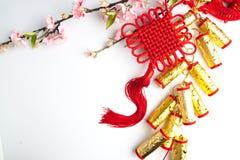 la prune chinoise de décorations de festival de nouvelle année fleurit sur le blanc avec Photographie stock libre de droits