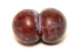 La prune de mutation, prune a formé le cul Photos stock