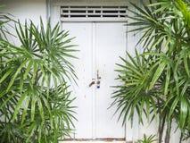 La puerta de madera Fotografía de archivo libre de regalías