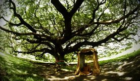 La puerta de madera grande al sur de la meditación Fotografía de archivo