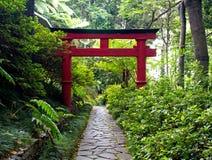 La puerta de Torii del japonés y el camino de piedra en zen cultivan un huerto Foto de archivo