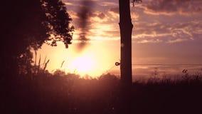 La puesta del sol agradable con la opinión sobre el cielo rojo y el inicio de sesión se centran metrajes