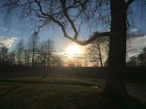 La puesta del sol brilla Fotos de archivo libres de regalías
