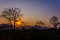 La puesta del sol con los árboles silueteados Fotografía de archivo