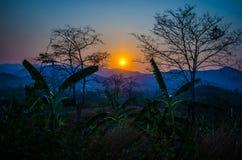 La puesta del sol con los árboles silueteados Fotos de archivo