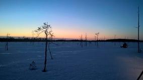 La puesta del sol con wolfs Fotografía de archivo libre de regalías