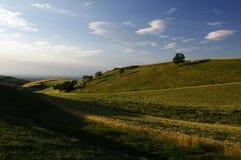 La puesta del sol de los campos de trigo Foto de archivo libre de regalías
