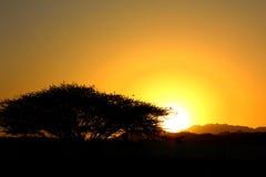 La puesta del sol de oro Fotos de archivo libres de regalías