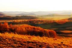La puesta del sol de oro del prado Foto de archivo libre de regalías