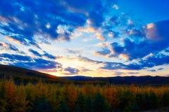 La puesta del sol del bosque del otoño Imagen de archivo