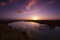 La puesta del sol del humedal Imágenes de archivo libres de regalías