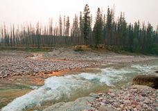 La puesta del sol en la confluencia de río de cabeza llana de South Fork y Jack Creek perdido en la cala del prado Gorge en Bob M fotografía de archivo libre de regalías
