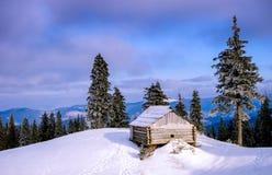 La puesta del sol en la madera entre los árboles filtra en período del invierno Fotografía de archivo libre de regalías
