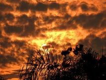 La puesta del sol enciende para arriba las nubes Fotografía de archivo