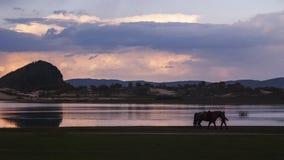 La puesta del sol general del bulbo Fotos de archivo libres de regalías