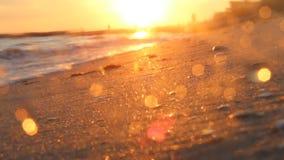 La puesta del sol hermosa y la playa, primer del mar, empañaron el fondo video almacen de metraje de vídeo