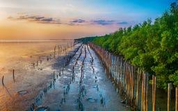 La puesta del sol, niveles de la agua de mar disminuye Imagen de archivo
