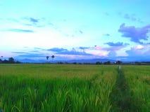 La puesta del sol se nubla la silueta del cielo en Tailandia del norte Fotos de archivo