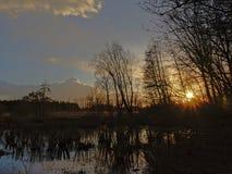 La puesta del sol sobre paisaje del humedal del invierno con el árbol desnudo siluetea el reflejo en el agua Fotografía de archivo