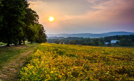 La puesta del sol sobre un campo de granja y las colinas de Piegon acercan a la arboleda de la primavera, Foto de archivo