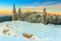 La puesta del sol y el invierno fantásticos ajardinan, Cárpatos, Rumania, Europa Foto de archivo