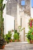 La Puglia, Polignano un vicolo della giumenta Immagini Stock Libere da Diritti