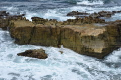 La puissance de l'océan pacifique Photographie stock libre de droits