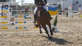 La puleggia tenditrice maschio professionista irriconoscibile guida a cavallo Il cavallo è galoppante e saltante attraverso una b Immagini Stock Libere da Diritti