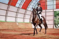 La puleggia tenditrice monta il cavallo in arena Immagini Stock Libere da Diritti