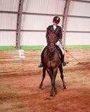 La puleggia tenditrice monta il cavallo in arena Fotografia Stock Libera da Diritti
